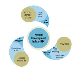 Nagaland Human Development Index