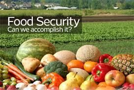 Nagaland Food Security